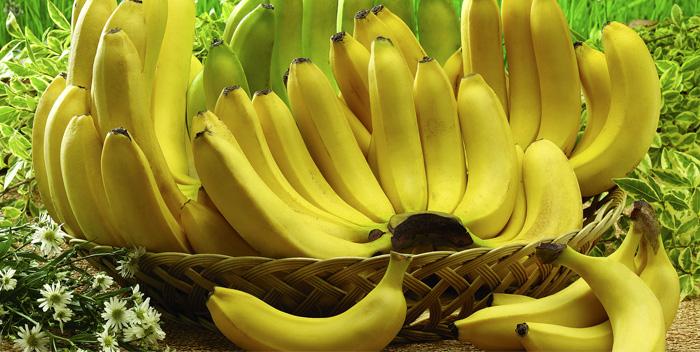 Польза и вред банана