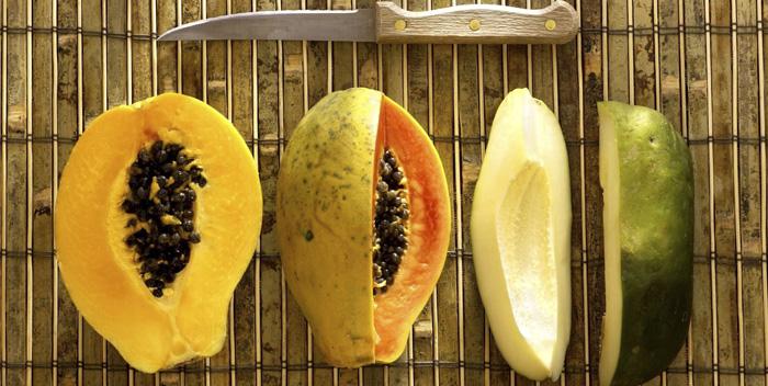 Польза и вред папайи