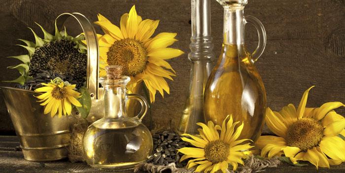 Семена подсолнечника: 21 полезное и 8 вредных свойств