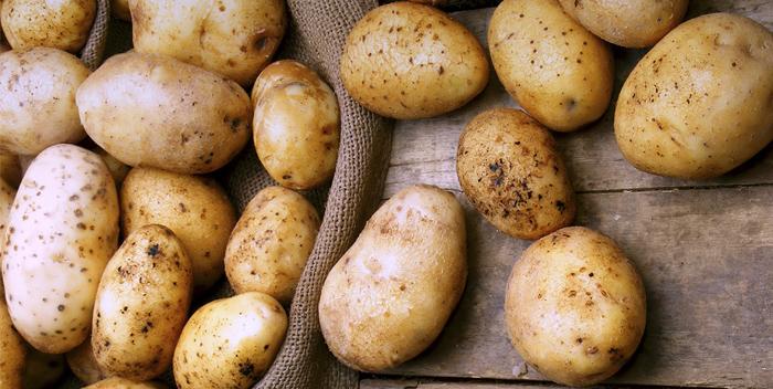 Самый полезный овощ осени – картофель