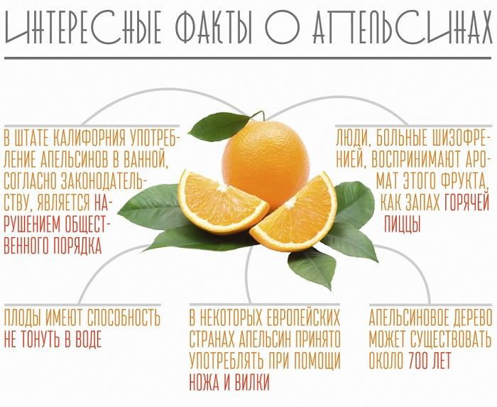 Интересные факты об апельсинах