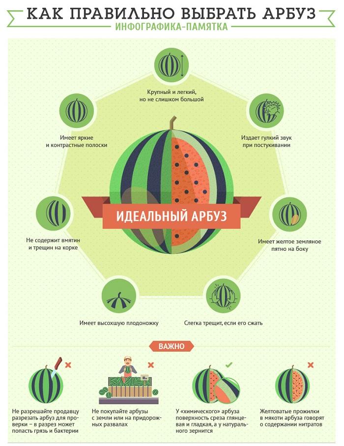 Памятка как правильно выбрать арбуз