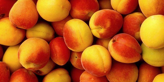 Как правильно выбрать абрикос?
