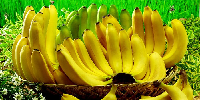 Как и где правильно хранить бананы?