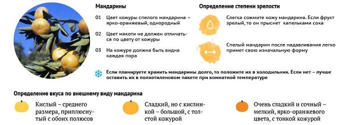 Как выбрать хороший мандарин