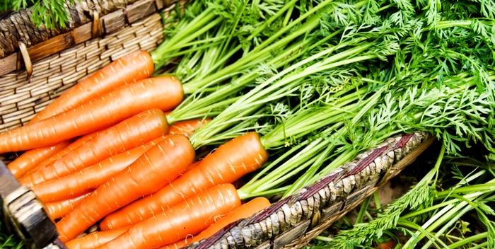 Морковь хранится в ящике