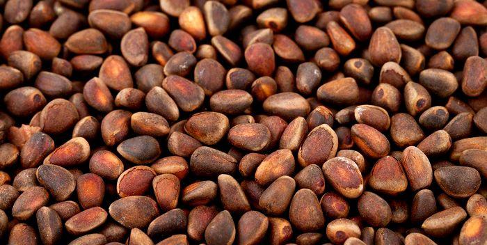 Как правильно выбрать кедровый орех?