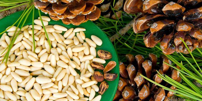 Как и где правильно хранить кедровые орехи?