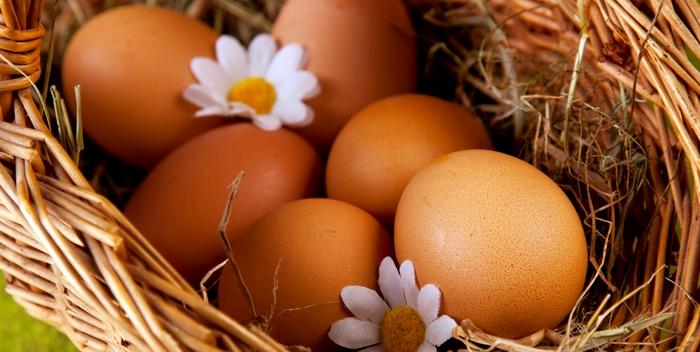 Ученые: употребление яиц не вызывает заболеваний сердца