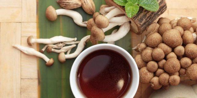 Чайный гриб: 25 полезных и 7 вредных свойств