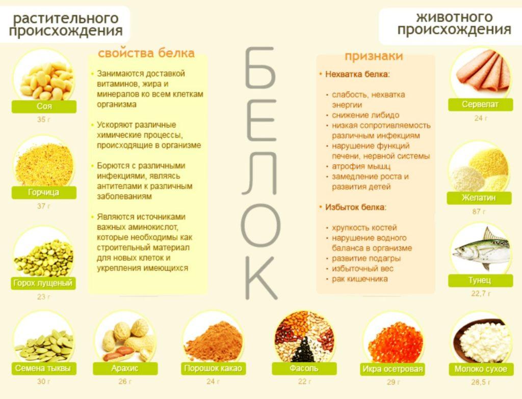 Белок растительного и животного происхождения Белковые продукты