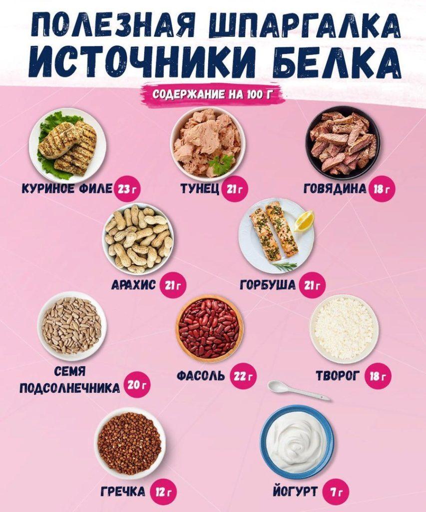 Источники белка Белковые продукты