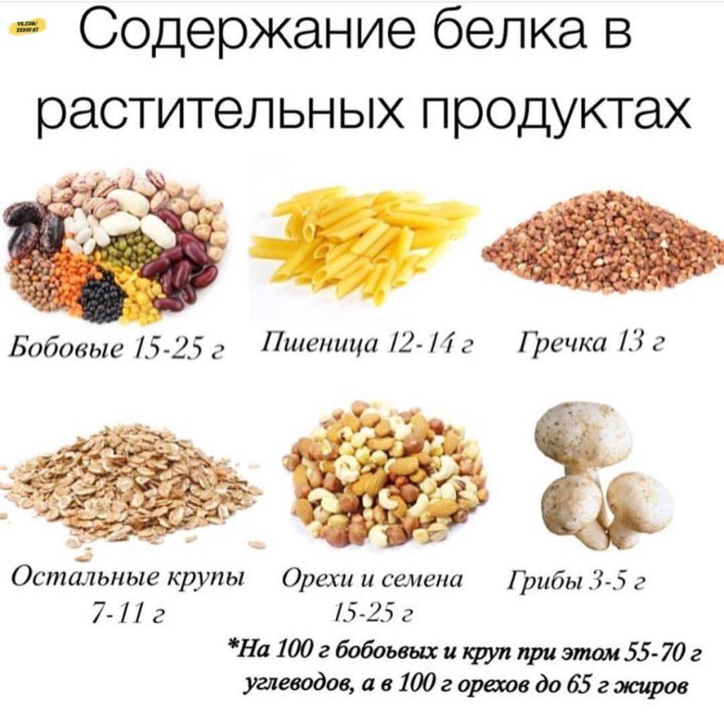 Содержание белка в растительных продуктах Белковые продукты