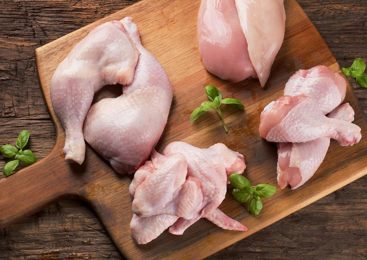 картинки хорошего качества курица точило