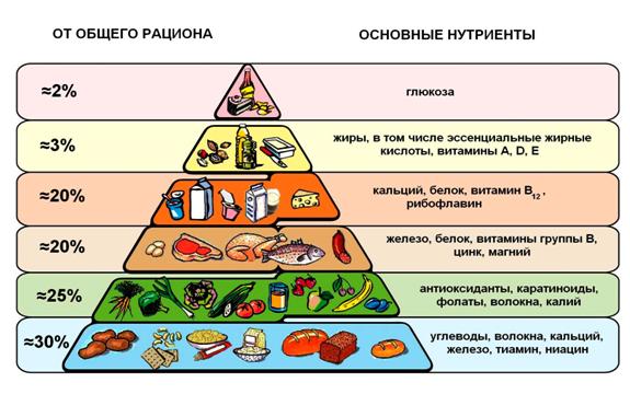 Сбалансированный состав пищи