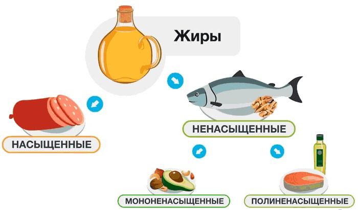 Жиры в питании человека: их разновидности