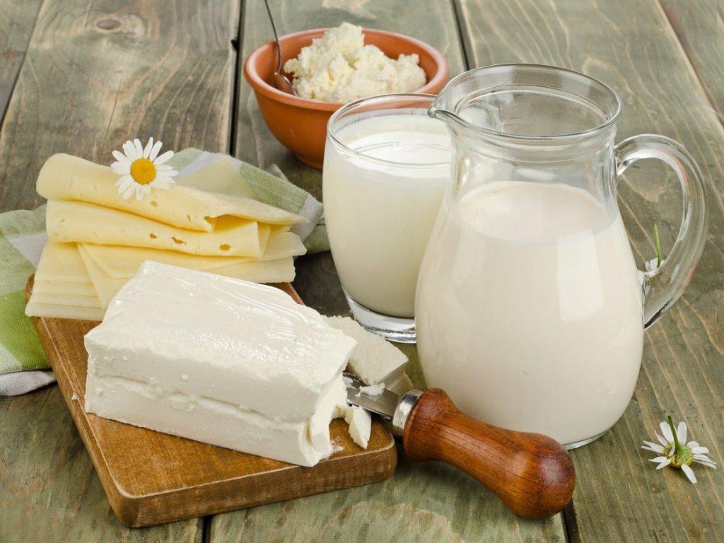 молочные продукты питания