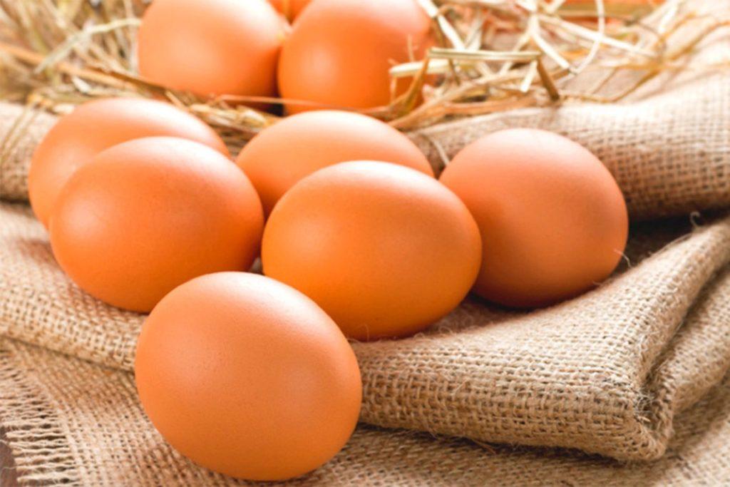 яйца в рационе питания
