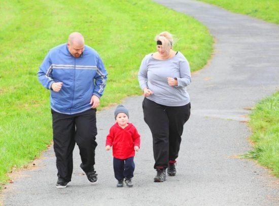obesity factors