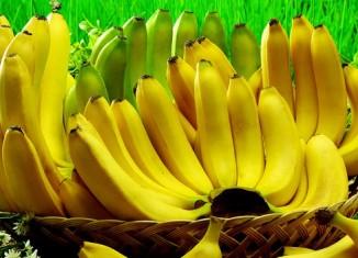 Много веток бананов