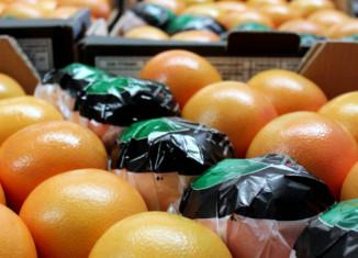 Хранение грейпфрутов